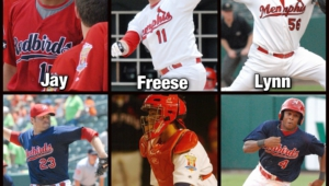 Memphis Redbirds Wallpaper