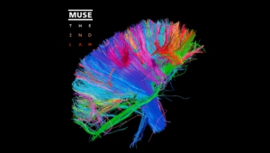 Muse High Definition Wallpapers