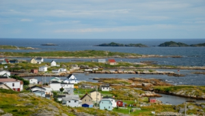 Newfoundland Widescreen