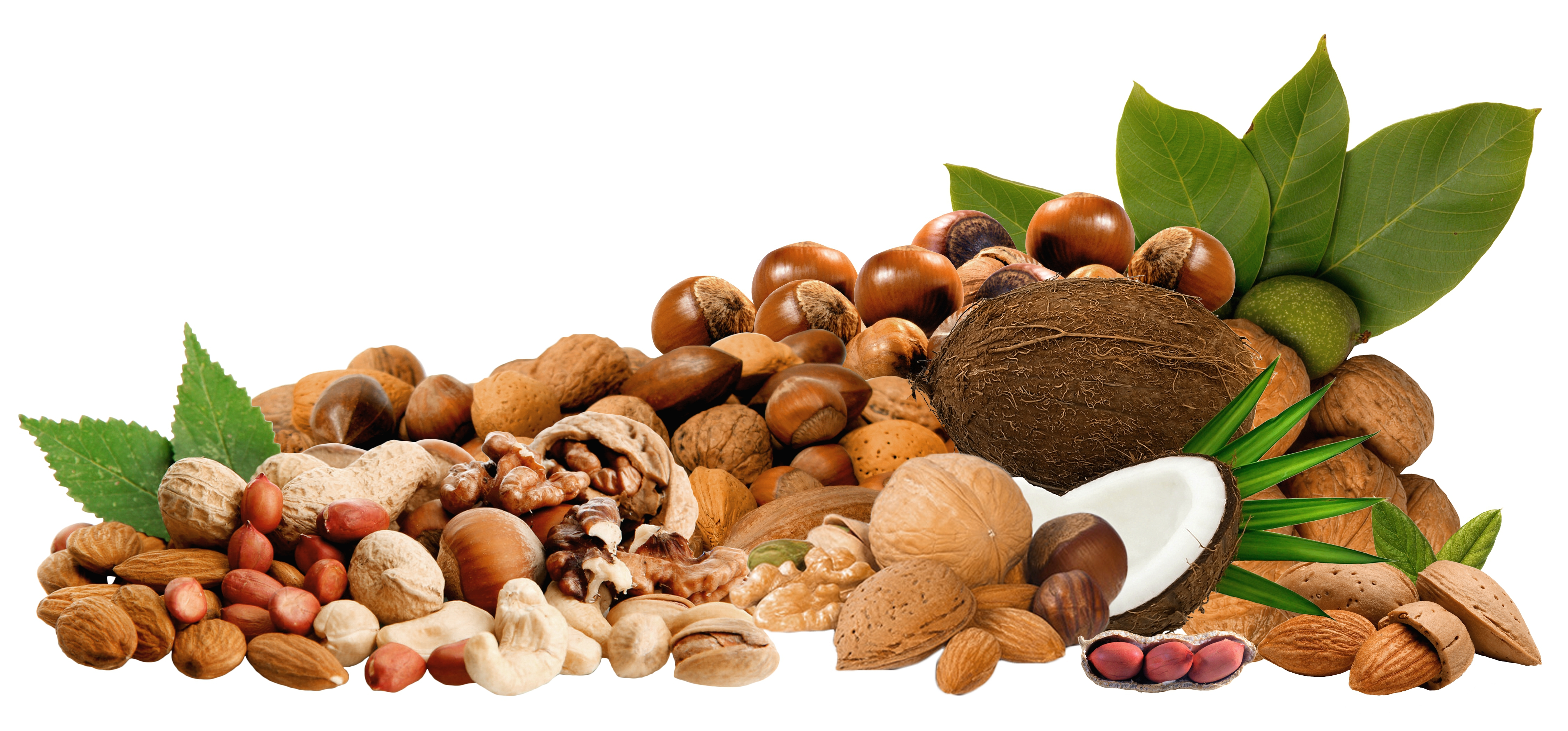 Dry Nuts Hd Free Image: Nuts Wallpapers Images Photos Pictures Backgrounds