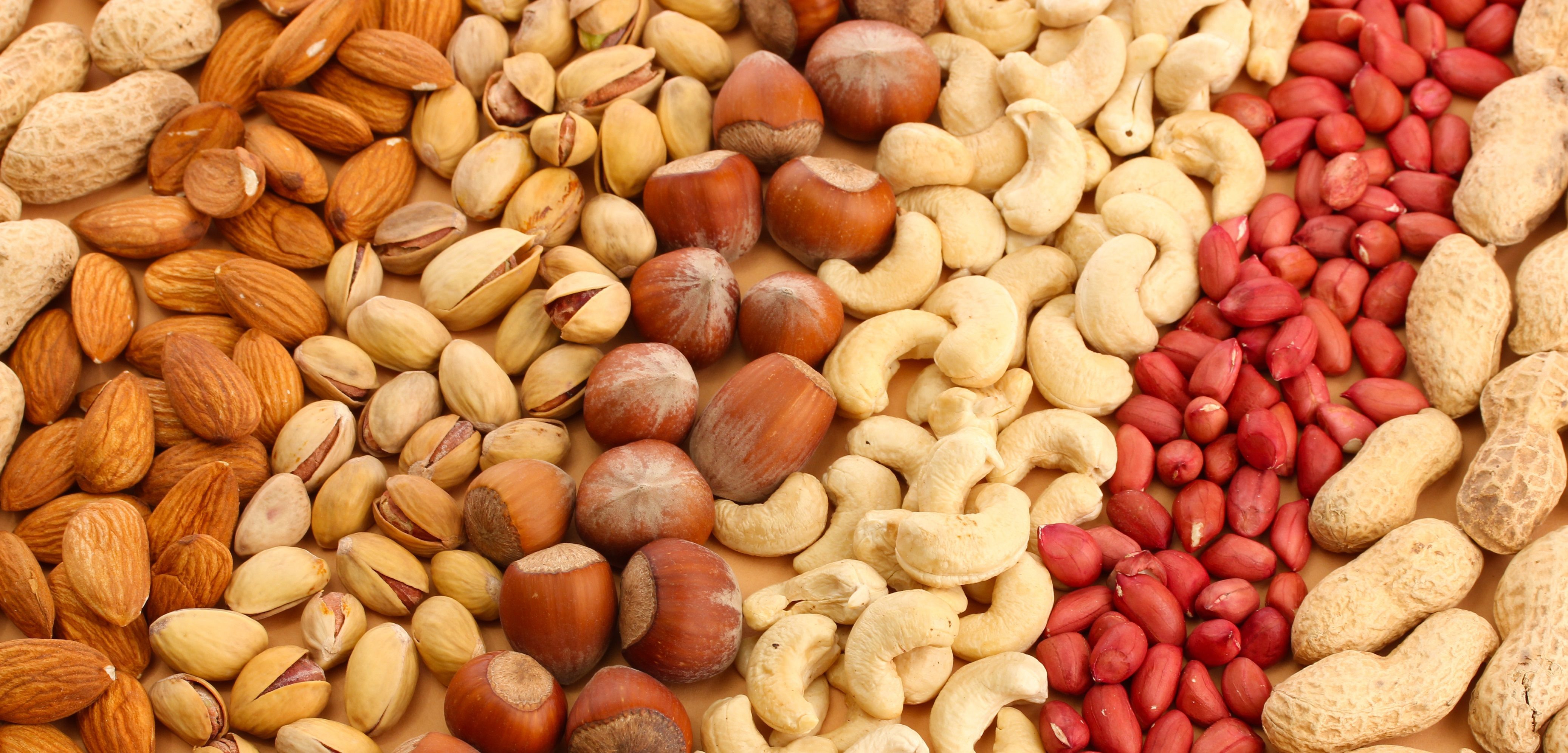 Nuts Wallpapers Images Photos Pictures Backgrounds