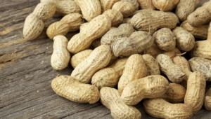 Peanuts Hd Desktop