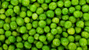 Peas Images