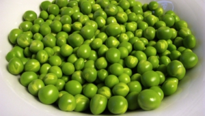 Peas Pictures