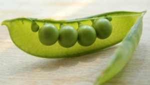 Peas Wallpaper For Computer
