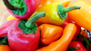 Peppers Images
