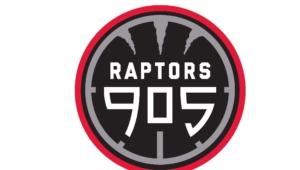 Raptors 905 Pictures