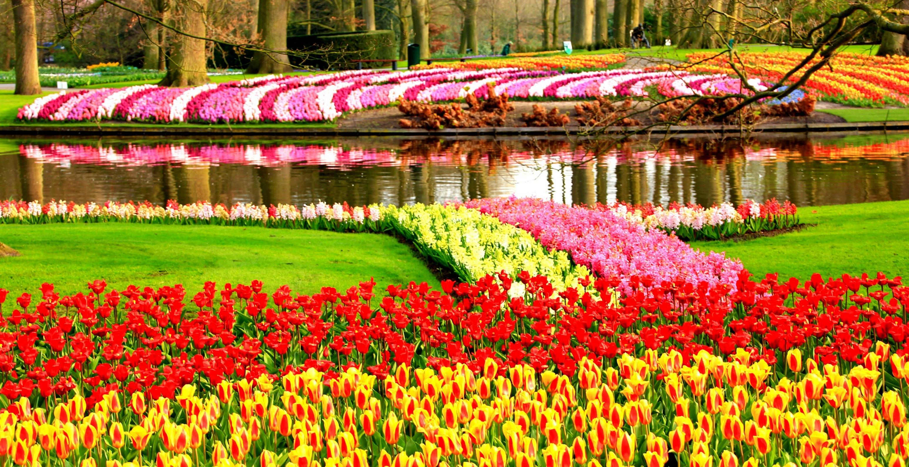 river flower garden wallpaper - photo #5