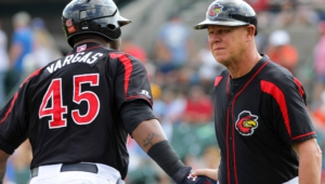Rochester Red Wings Hd Wallpaper