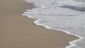 Seashore Images