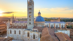 Siena Background