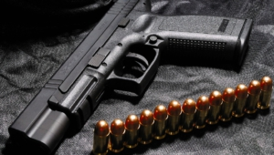 Springfield Xd Pictures
