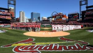 St Louis Cardinals For Desktop