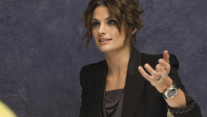 Stana Katic High Quality Wallpapers