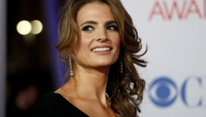 Stana Katic Widescreen