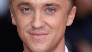 Tom Felton High Quality Wallpapers