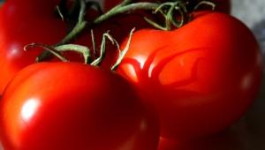 Tomato 4k