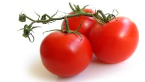 Tomato Desktop Wallpaper