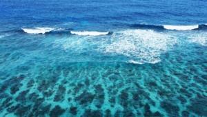 Turquoise Sea Full Hd