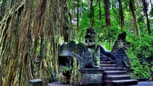 Ubud Wallpapers Hd