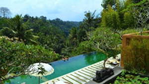 Ubud Widescreen