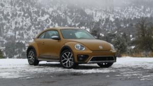 Volkswagen Beetle Images