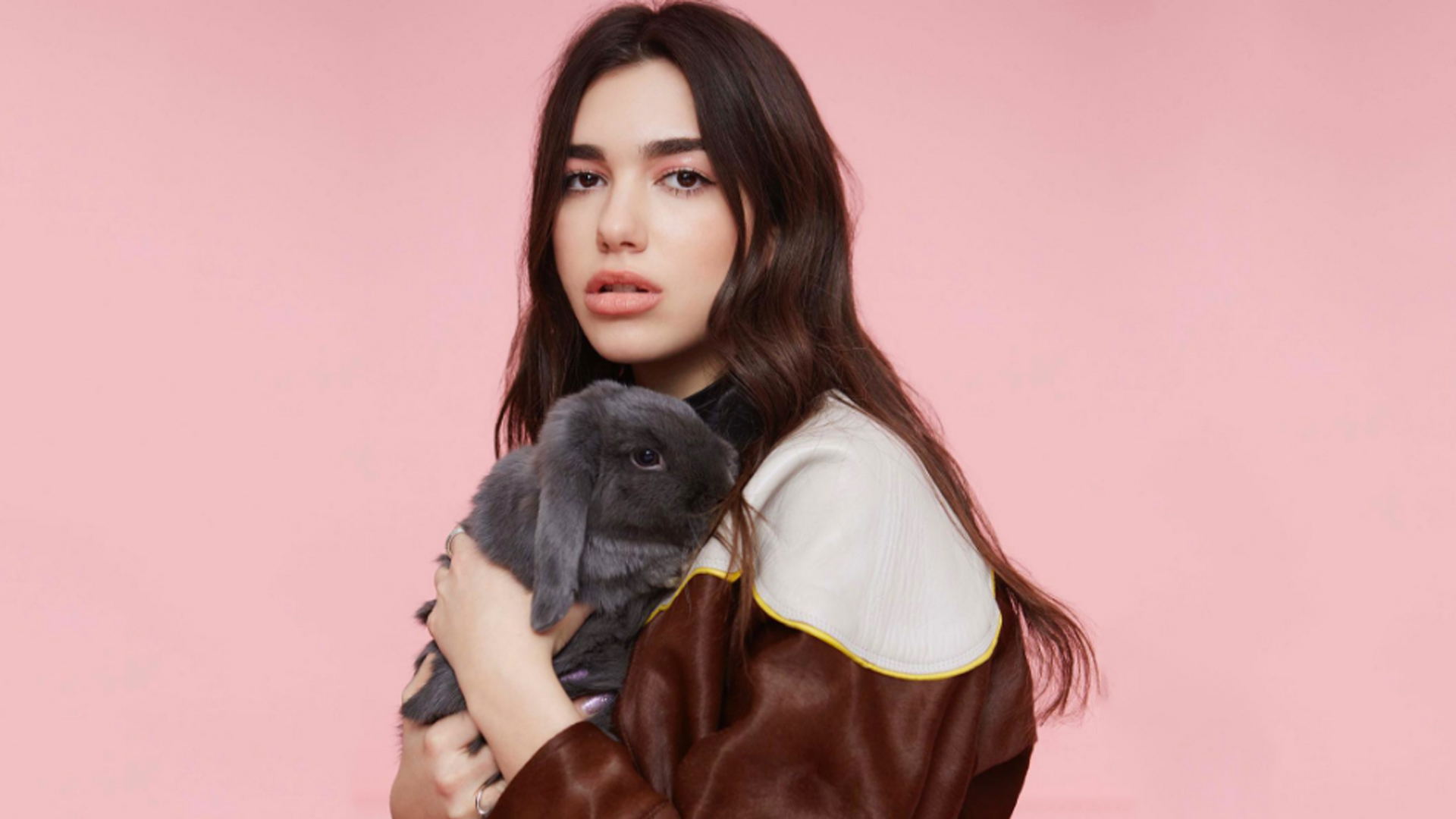 dua lipa wallpapers images photos pictures backgrounds