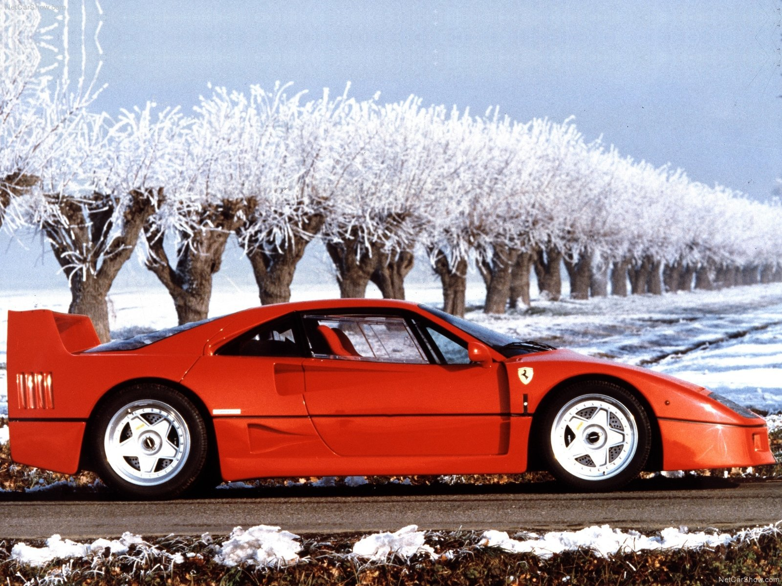 Ferrari F40 Pictures