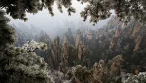 Tianzi Mountain High Quality Wallpapers