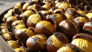 Chestnut Pictures