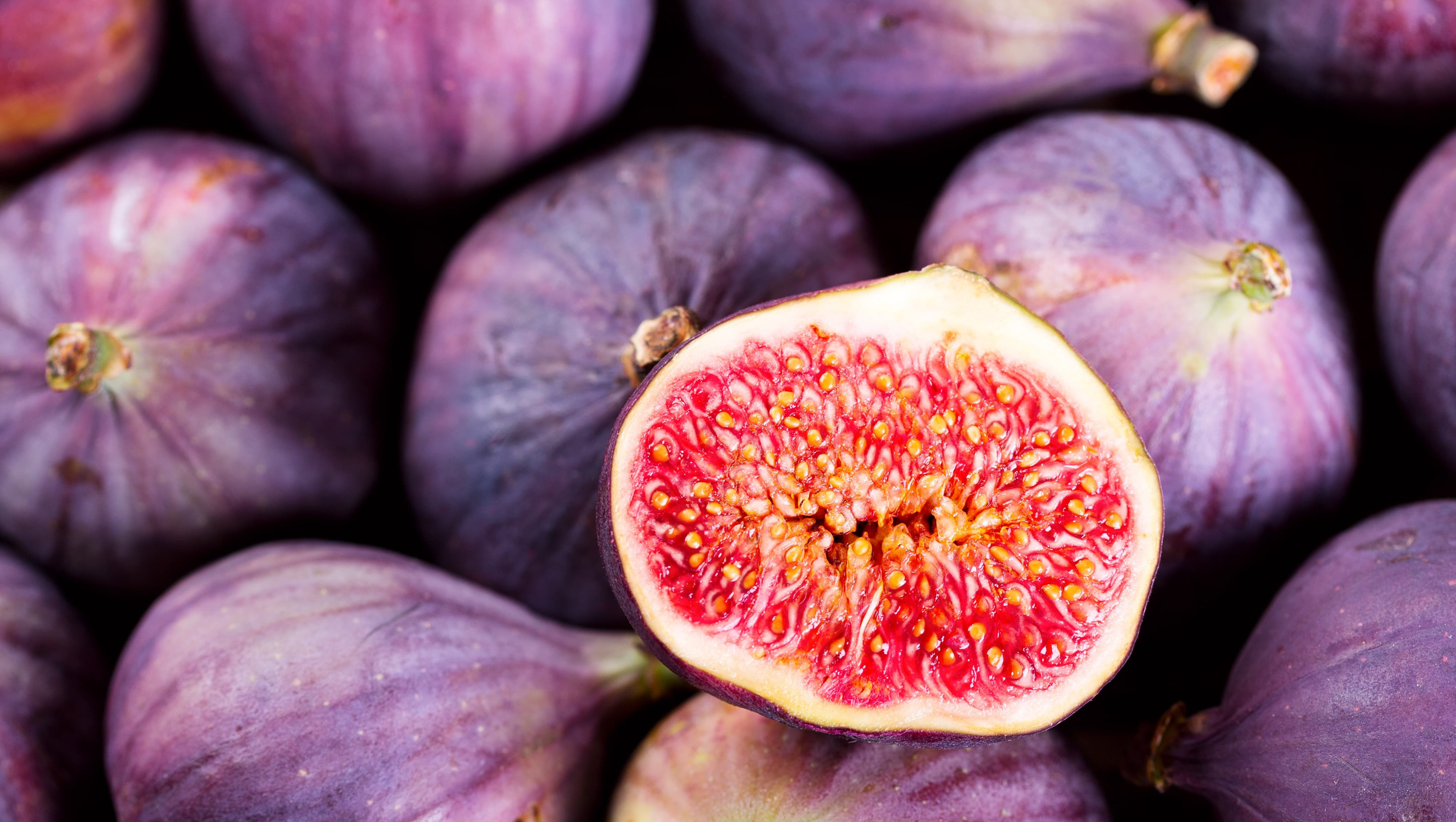 Fig Background