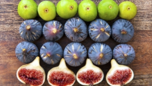 Fig HD Desktop