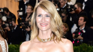 Pictures Of Laura Dern